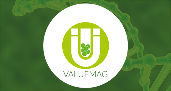 ProgettoVALUEMAG