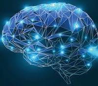 Il cervello a riposo? Ottimizza le proprie prestazioni future