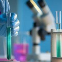 """Alcuni batteri """"buoni"""" nel microbiota sono legati ad una ridotta quantità di grasso viscerale"""