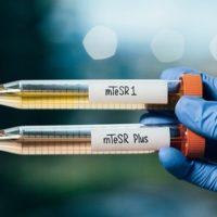 STEMCELL Technologies lancia mTeSR Plus