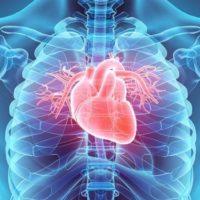Malattie cardiovascolari in controtendenza: aumento tra i 'nuovi' anziani