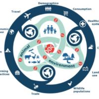 L'analisi dei big data per monitorare malattie infettive emergenti