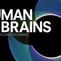 "Fondazione Prada presenta ""Human Brains"""