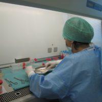 La Banca della Cute di Pievesistina brevetta nuovo sistema di conservazione a temperatura ambiente dei tessuti bioingegnerizzati