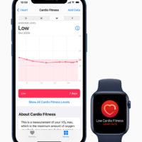 Notifiche sul tono cardiovascolare ora disponibili su Apple Watch