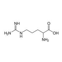 Bioarginina controlla lo sviluppo dei danni endoteliali da COVID