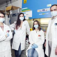 Scoperto un nuovo meccanismo alla base della Malattia di Parkinson