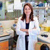 Sclerosi multipla progressiva: identificata proteina chiave nel processo neurodegenerativo