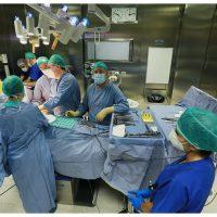 Due lembi muscolo-cutanei dell'addome utilizzati in Casa Sollievo per ricostruire il seno dopo l'asportazione di un grosso tumore esteso all'esterno